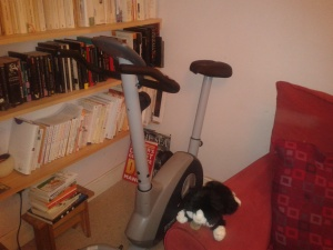 exercise bike,
