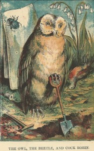 Cock-Robin-Owl-188x300