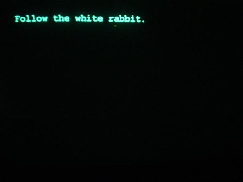 The Matrix, Neo, white rabbit, Alice's Adventures in Wonderland
