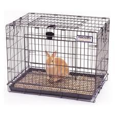caged rabbit