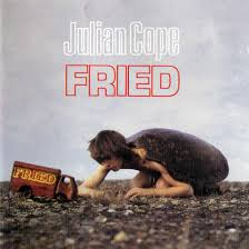 Julian Cope 'Fried'